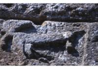 Le lièvre du pont du Gard- Gravure phallique romaine chargée d'éloigner le mauvais sort. Voir la légende avancée par Frédéric Mistral